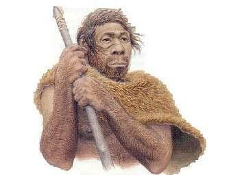 Предположительный внешний вид неандертальца. Изображение с сайта bu.edu